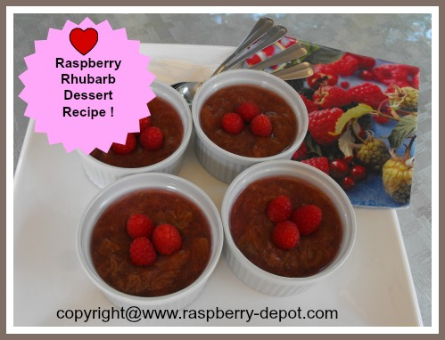 Raspberries and Rhubarb Dessert Recipe