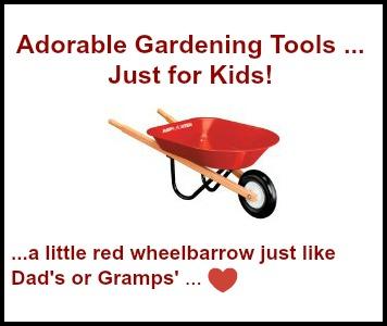 Kid's Size Wheelbarrow Just Like Daddy's