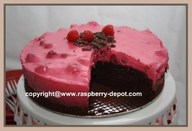 Chocolate Raspberry Cake Easy and Delicious
