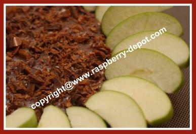 Best Ever Apple Dip Recipe Apple Snack Recipe