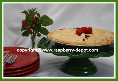 Recipe For Berry Apple Pie