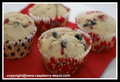 Fruit Muffins with Raspberries, Strawberries and Blueberries to Make at Home