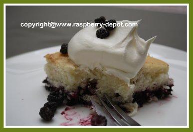 Black Raspberry Cobbler Dessert Recipe