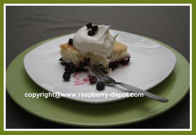 Wild Raspberry Cobbler Recipe