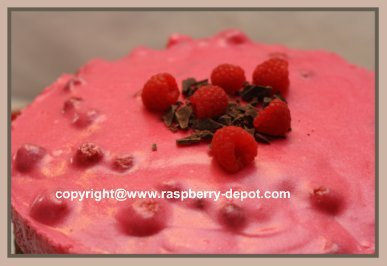 Chocolate Cake with Berries Easy Recipe