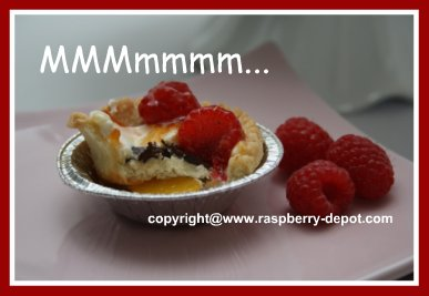Homemade Fruit Tarts in Store Purchased Tart Pastry  Shell