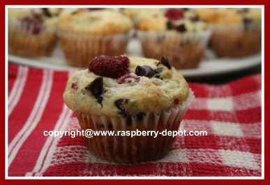 Chocolate Chip Raspberry Muffins