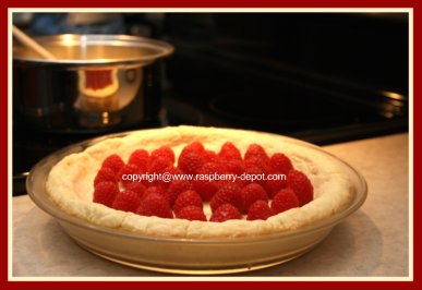 Making a Raspberry Custard Pie Recipe