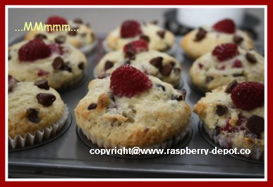 How To Make Raspberry Muffins at Home