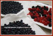 How to Wash Berries when Making a Fresh Fruit Platter