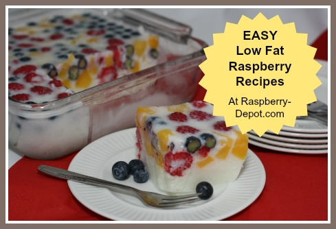 Low Fat Raspberry Recipes to Make