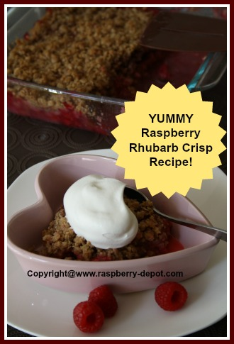 Raspberry Rhubarb Desert Crisp Recipe with oatmeal topping -- use fresh OR frozen rhubarb!