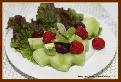 Christmas Fruit Salad Idea with Honey Dew Lemon Cut-out - Recipe Idea