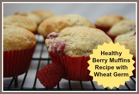 Healthy Berry Muffins Recipe with Wheat Germ