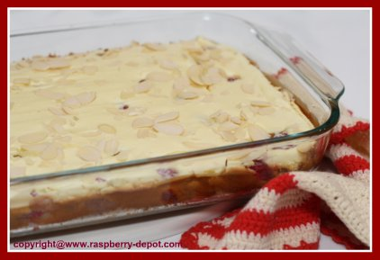Raspberry Squares /Bars Recipe Made in a 9