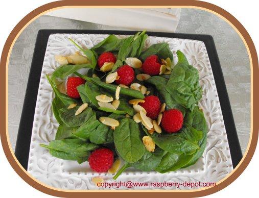 Green Salad with Raspberries Spinach Raspberry Salad