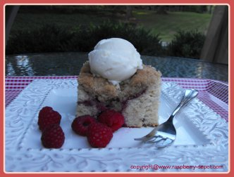 Homemade Raspberry Buckle Recipe for Dessert