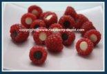 Raspberry Chocolate Chips