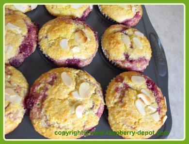 Raspberry Cornmeal Muffins, Homemade Recipe