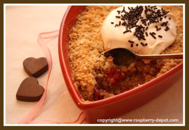 Homemade Raspberry Crisp Recipe