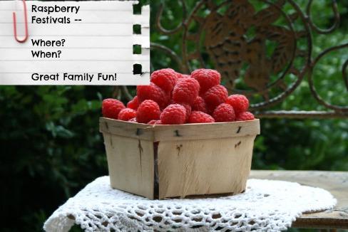 Pint of Fresh Red Raspberries
