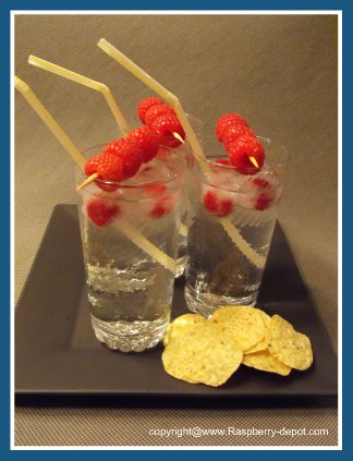 Ice Cubes with Raspberry Fruit Inside