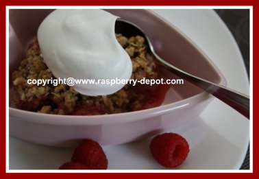Raspberry Rhubarb Crisp Dessert Recipe Idea