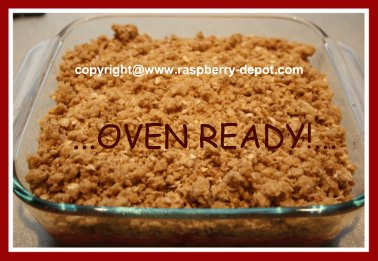 Homemade Rhubarb and Raspberry Crisp with Oatmeal Topping