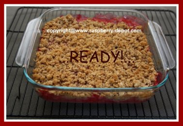 Yummy Dessert Recipe made with Raspberries and Rhubarb