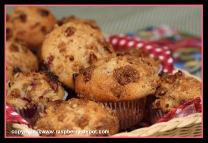 Fresh Raspberry Rhubarb Muffins Recipe