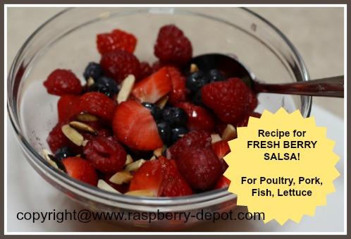 Homemade Fresh Fruit Salsa Recipe with Raspberries, Blueberries and Strawberries
