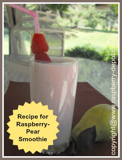 Homemade Smoothie Recipe made with Pears and Raspberries