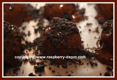 Raspberry Chocolate Truffles Image