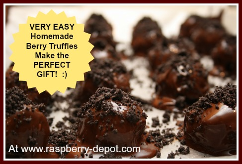 Making Truffles at Home