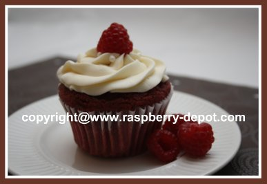 Home Baked Red Velvet Cupcake with Cream Cheese Frosting /Icing