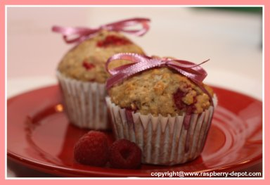 Raspberry Whole Wheat Muffins