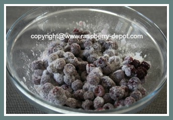 Wild Raspberries for Recipe