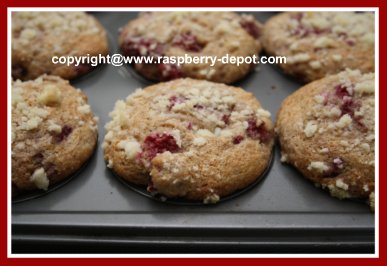 Berry Muffins with Yogurt