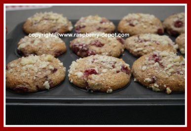 Picture of Yogurt Muffins with Berries