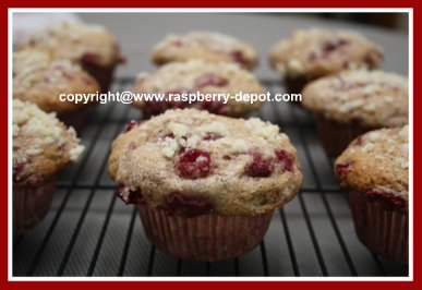 Healthy Whole Wheat Muffins and Berries
