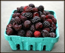 Picture of Black Raspberries