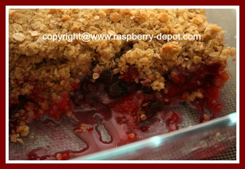 Black and/or Red Raspberry Recipe Idea Crumble Dessert