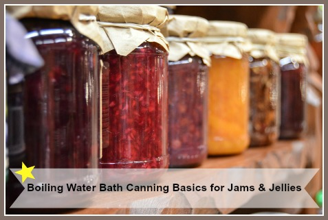 Boiling Water Bath Canning Instructions for Fruit Jams Jellies Conserves