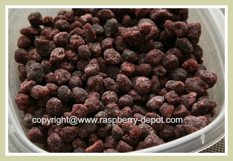 Picture of Dried Red Raspberries / Dehydrated / Freeze-Dried Berries