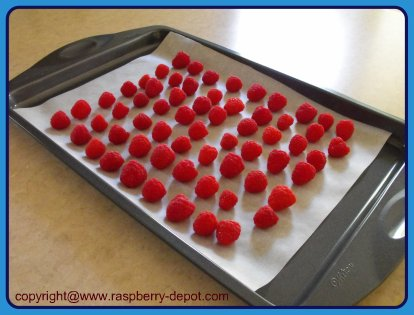 How to Keep Berries from sticking together when frozen