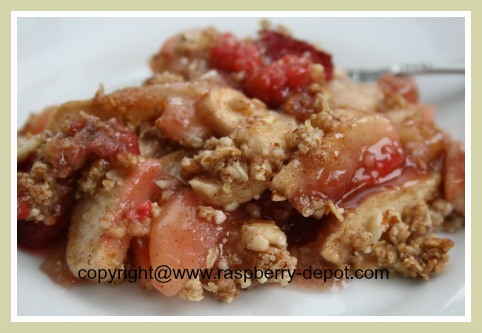 Gluten Free Raspberry Apple Crumble Dessert