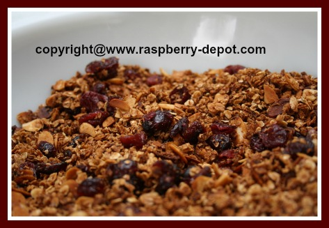 Homemade Granola with Dried Fruit Recipe