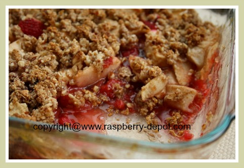 Homemade Gluten Free Raspberry Dessert Recipe Idea