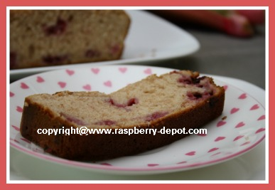 Homemade Raspberry Bread Slice