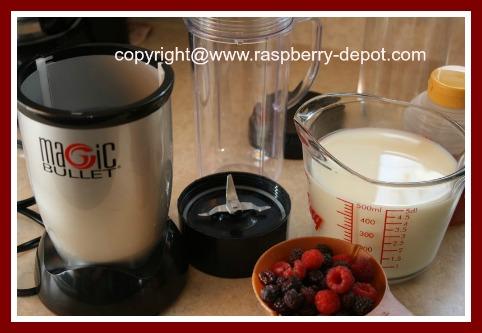 What you need to make a Raspberry Smoothie or Milkshake